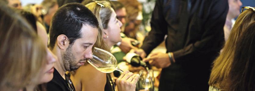IFSC abre nova turma do curso de Análise Sensorial de Vinhos e Espumantes