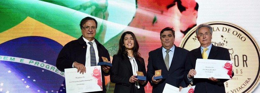Brasil é destaque do principal prêmio da indústria vinícola chilena