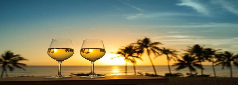 Conheça os tipos de vinhos ideais para o verão.