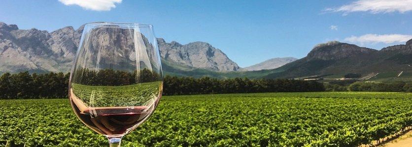 7 hotéis com vinícolas para quem ama beber vinho!