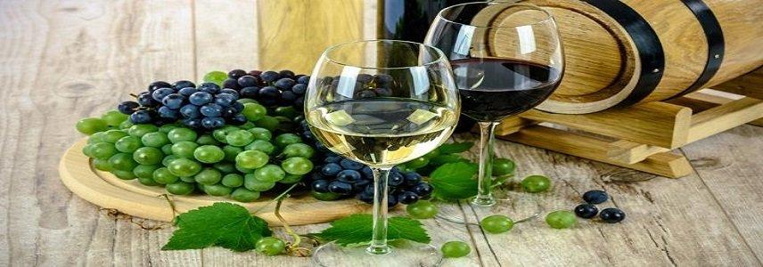 Os 5 Melhores Vinhos Suaves