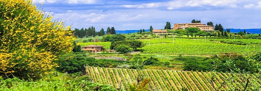 10 destinos que todo apaixonado por vinho tem que conhecer